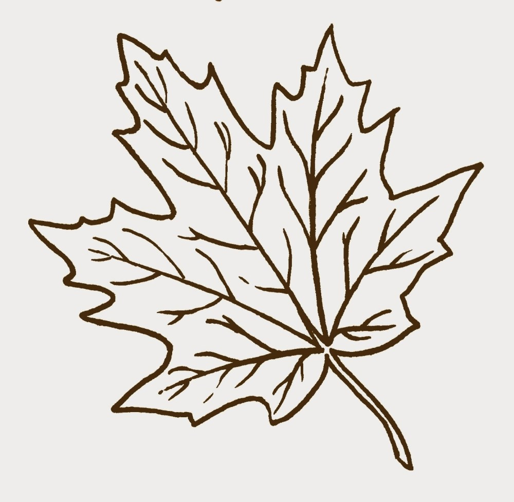 medium resolution of leaf black and white fall leaves clipart black and white clipartfest