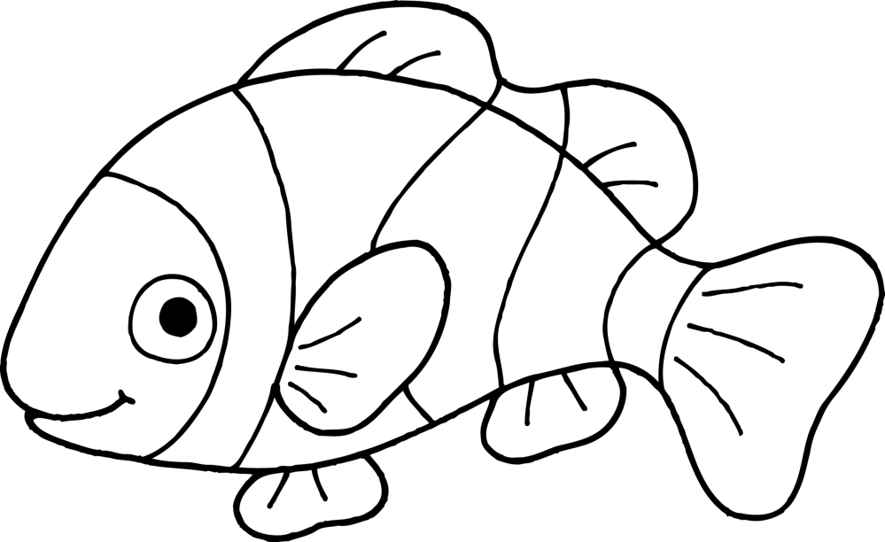 medium resolution of clownfish clown fish outline clipart