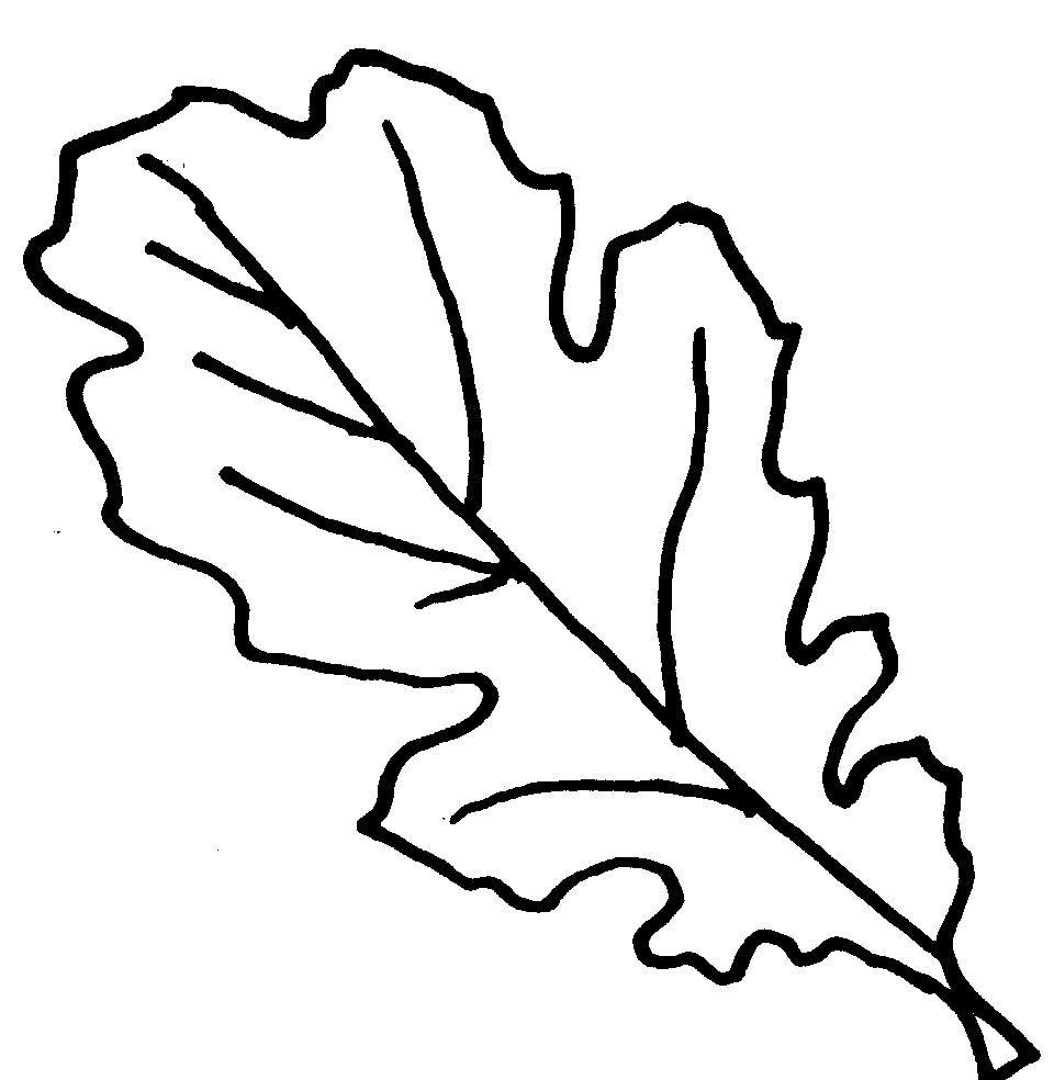 medium resolution of leaves black and white free oak leaf clipart 2