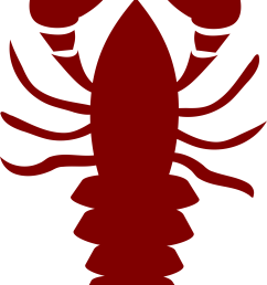 lobster outline lobster pics clipart [ 1463 x 2400 Pixel ]