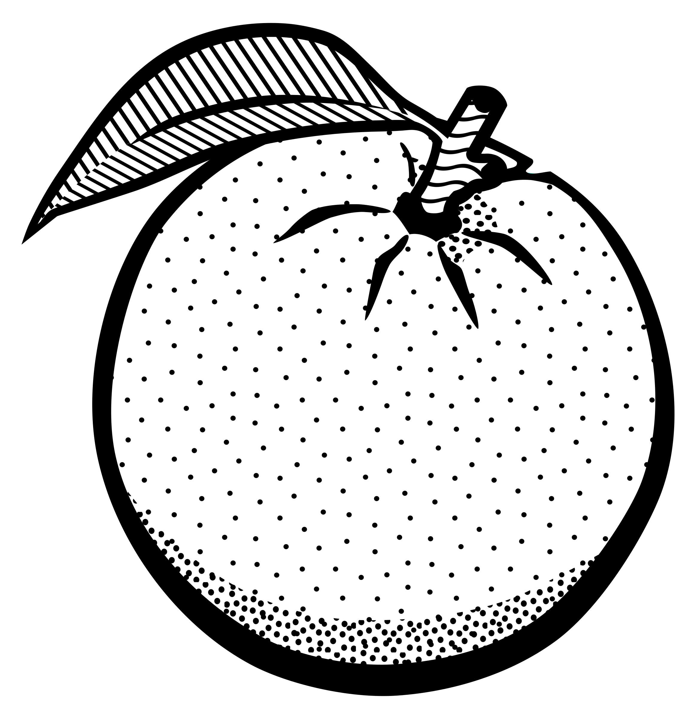Fruit Black And White Orange Fruit Clipart Black And White Clipartfest 4