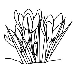 grass black and white grass clipart line drawing pencil and in color grass [ 1200 x 1200 Pixel ]