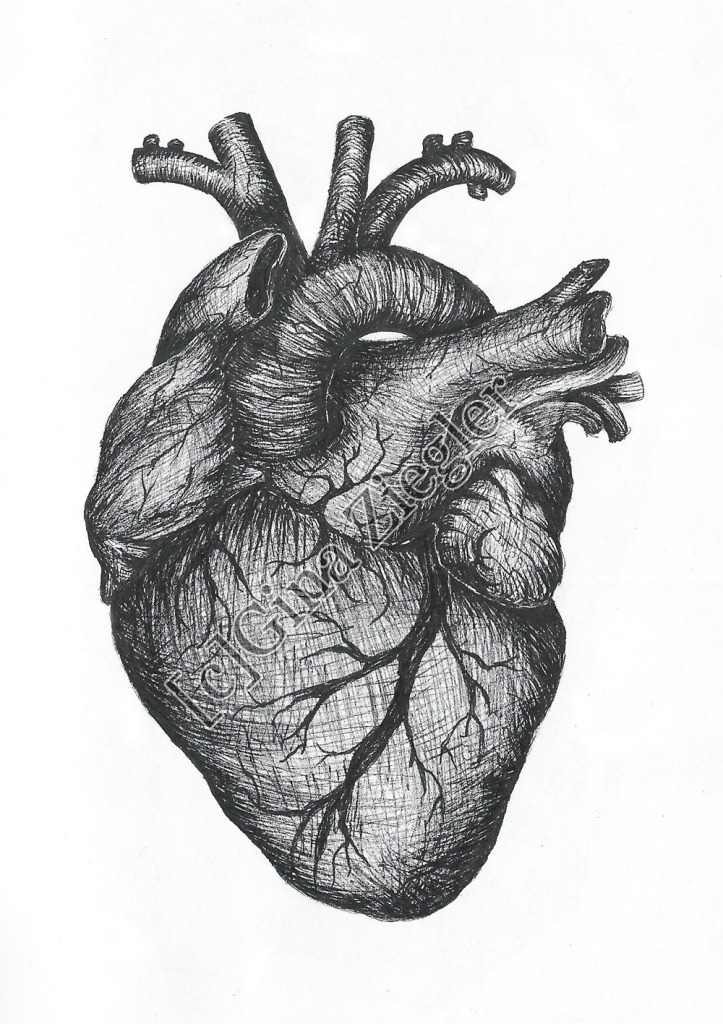 real heart heart drawing