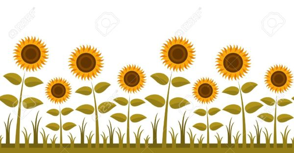 sunflower free garden clipart