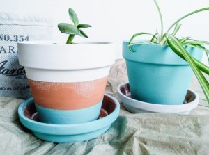 296-how-to-paint-terracotta-pots