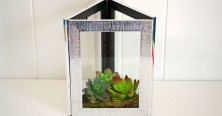 693-framed-faux-plant-terrariums
