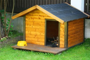 971-how-to-build-a-dog-house