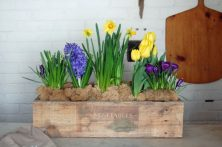 046-how-to-build-a-simple-planter-box-the-perfect-easter-centrepiece-for-20