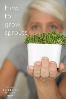 361-grow-sprouts-in-4-days