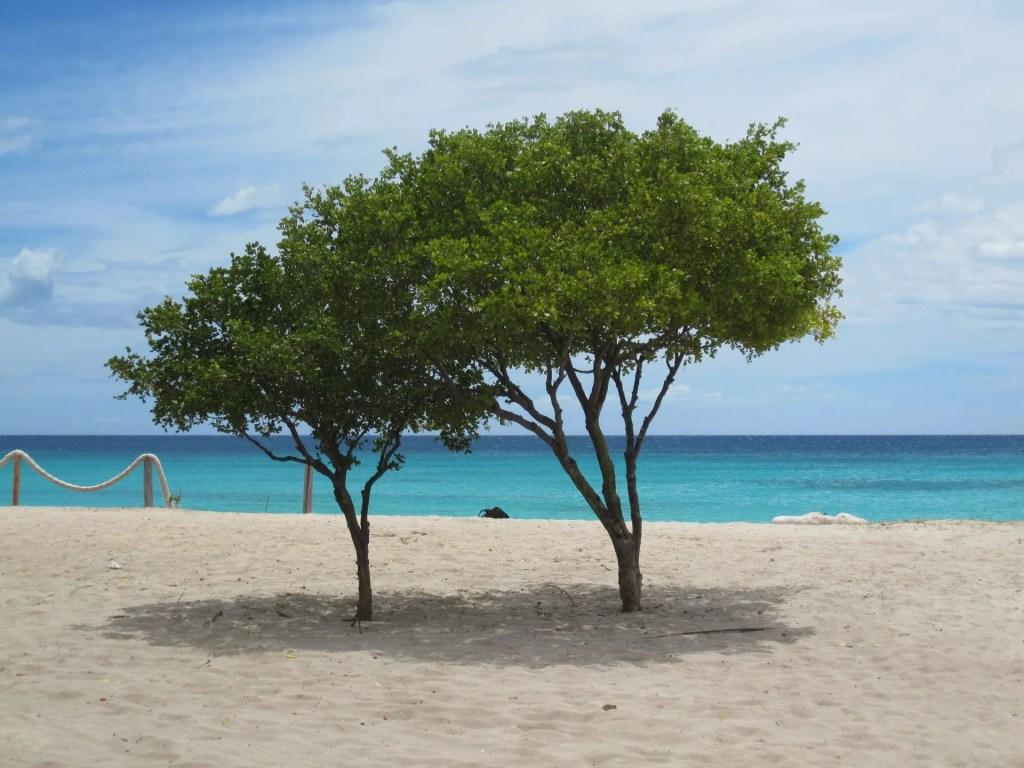 Cabo Rojo pedernales