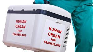 معلومات التجارة بالأعضاء البشرية
