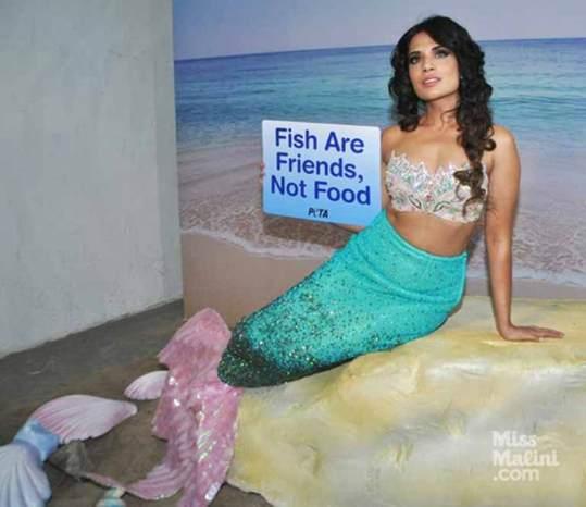 Ad campaign for PETA