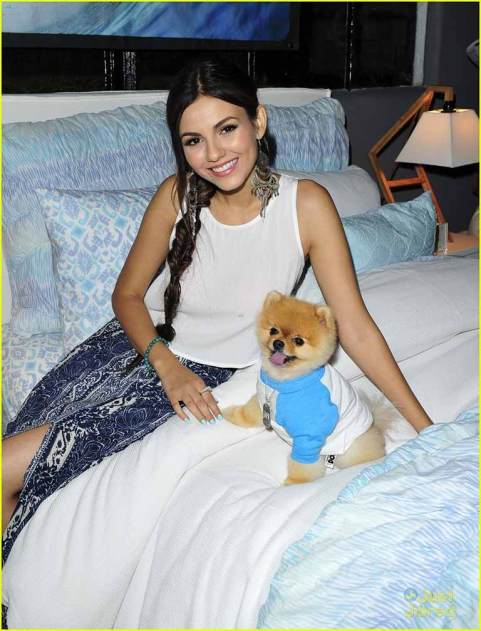 Victoria's dog