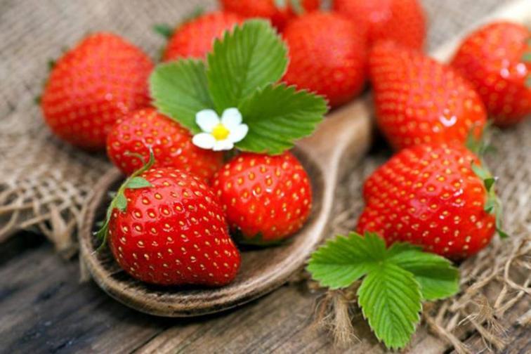 Những thực phẩm giúp bạn có đôi mắt khỏe mạnh (4)