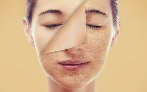 Cách sử dụng chất chống oxy hóa để làn da khỏe mạnh (5)