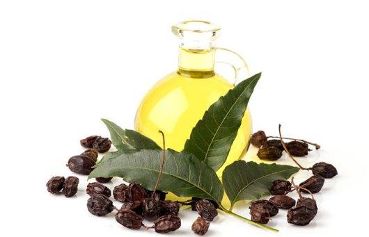 Những lợi ích của dầu Neem (2)