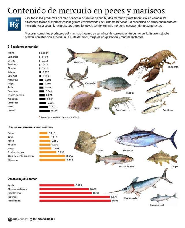 contenido-mercurio-en-peces-y-mariscos_wikigimnasio-com