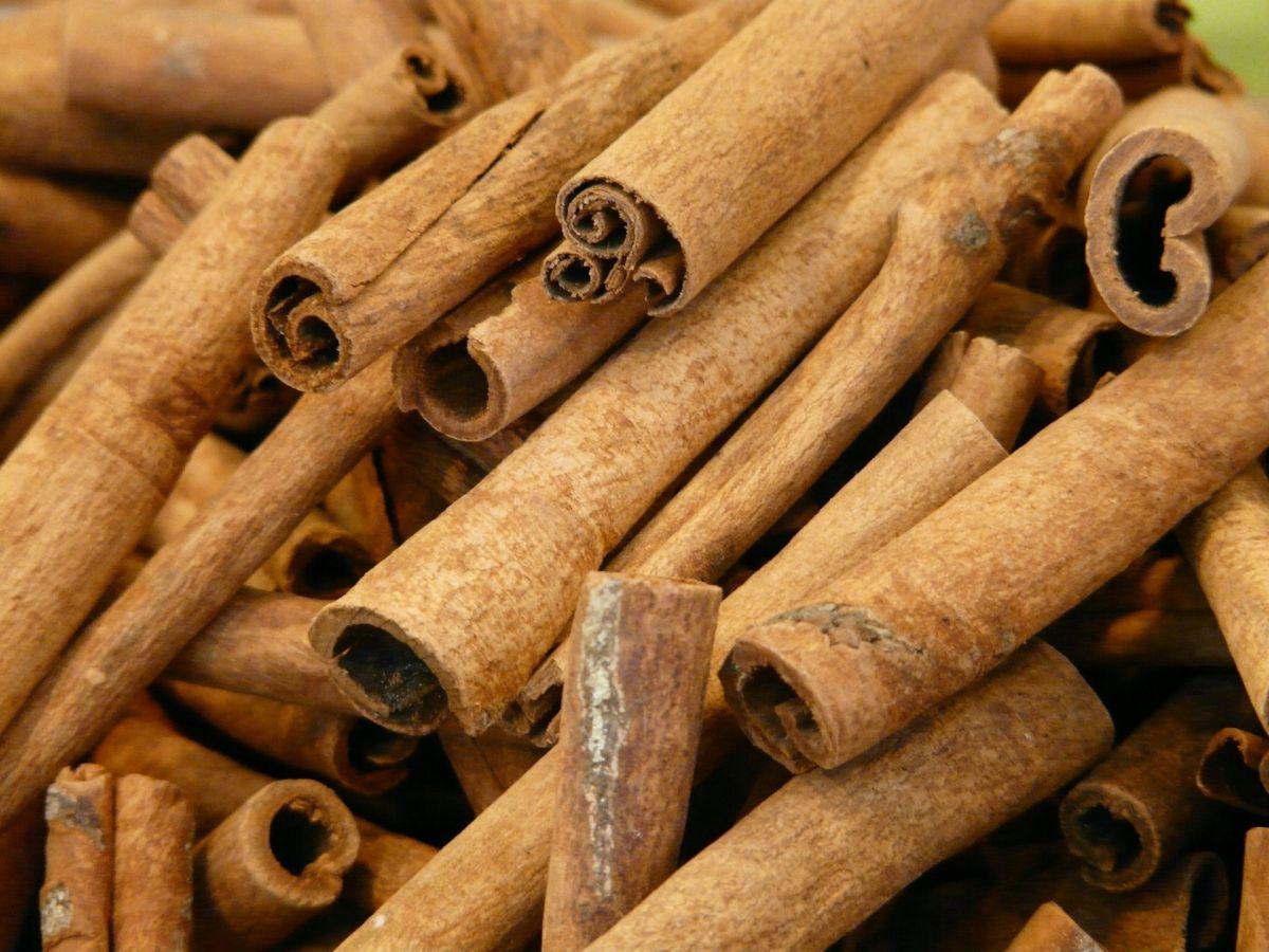 La canela(500mg/día) disminuye los niveles de glucosa, insulina y colesterol en pacientes con la glucosa elevada
