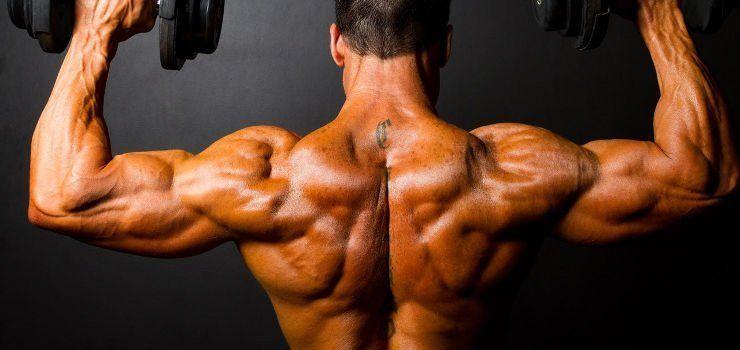 Las Claves para la máxima hipertrofia muscular