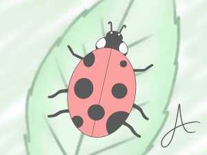ladybug drawing draw ladybird drawings step simple wikihow steps leaf paintingvalley