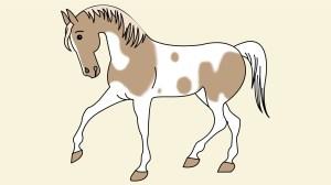 horse draw simple step horses como caballo dibujar drawing disegnare easy drawings cavallo dibujos wikihow semplice lapiz cavalli caballos facil