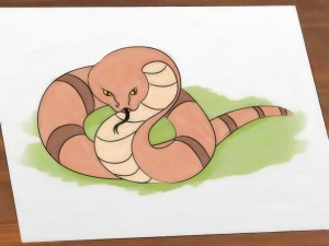 snake draw wikihow step ular gambar kartun menggambar simple steps kumpulan dan