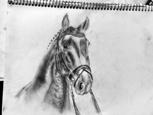 draw horse simple realistic wikihow steps ways uploaded ago months total looking