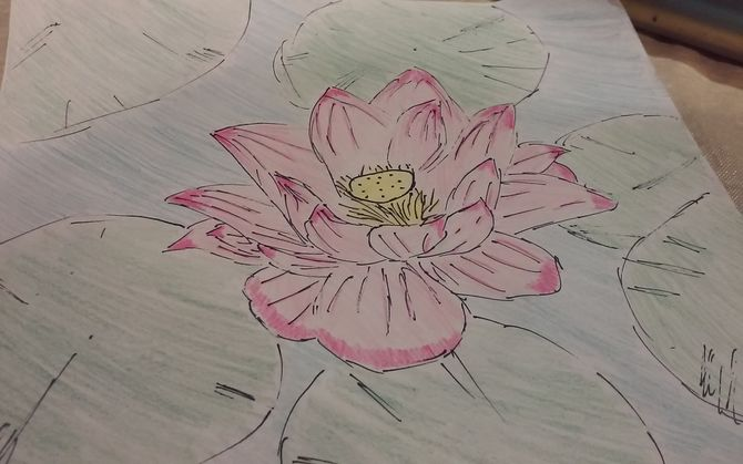 How To Draw A Lotus Flower: 7 Steps (with Pictures)