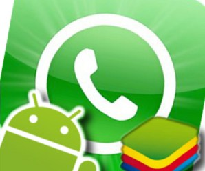 How to export numbers and profile pictures from WhatsApp