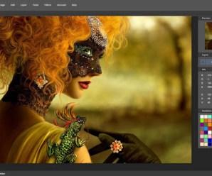 Picozu- Online Photo Editing Tool