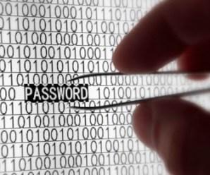 How To Reveal The Hidden Password Under Asterisks