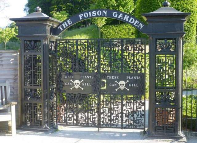 The Poison gate