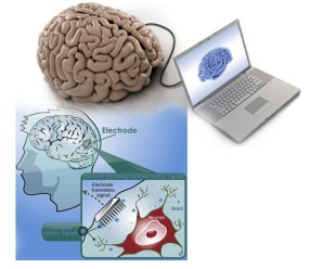How Can A Computer Acquire Help From The Human Brain