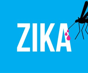 How to Recover From Zika Virus