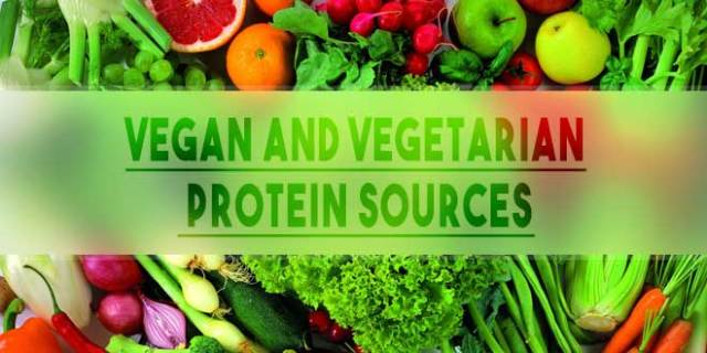 Sources Of Proteins