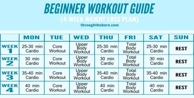 Workout Guide
