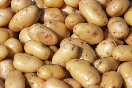 potatoes1200---