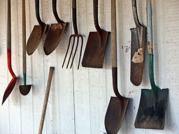 Clean garden tools with tomato ketchup