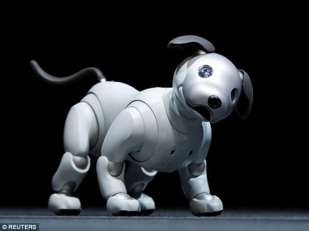 Puppybot Prototype Robot