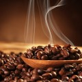 Some Things that You Should Know about Arabica Coffee Beans