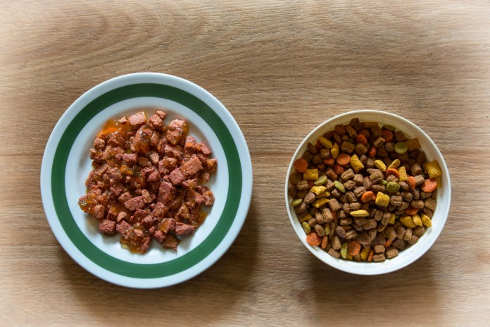 Wet Food Vs. Dry Food For Dogs? How to Choose the Best for Your Pet 2
