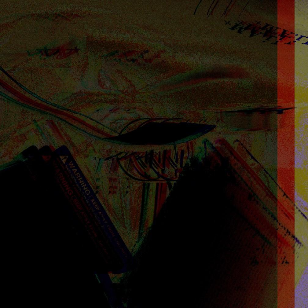 IMG_4528