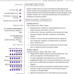 Business Analyst Resume Business Analyst Resume Example Template business analyst resume|wikiresume.com