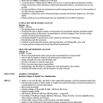 Business Analyst Resume Healthcare Business Analyst Resume Sample business analyst resume|wikiresume.com