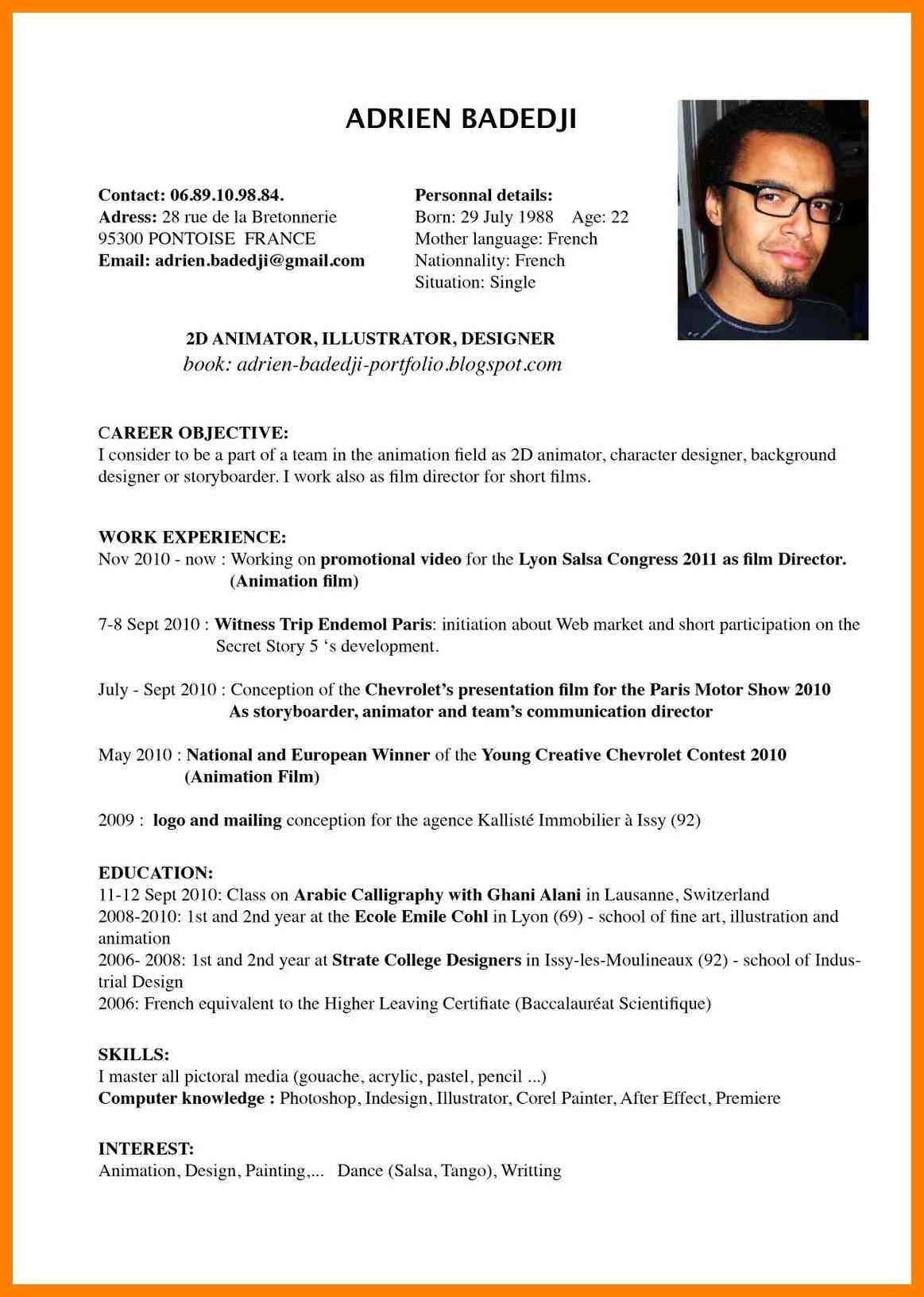 Example Of Resume Example Resume English Cv Profile Examples For Students Sample