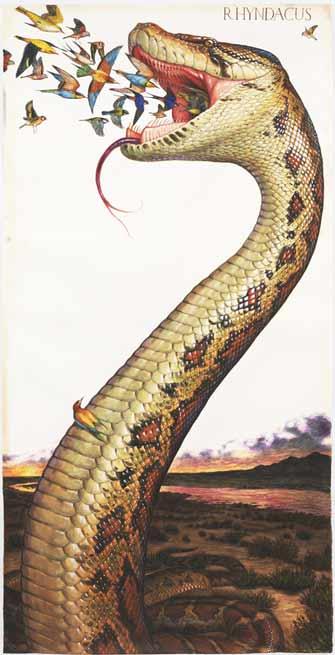 Rever De Tuer Un Serpent : rever, serpent, Rêve, SERPENT, Interprétation, Signification