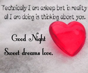 Best 35+ Good Night Messages For Wife