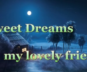 Loving 37+ Good Night Messages For Friends