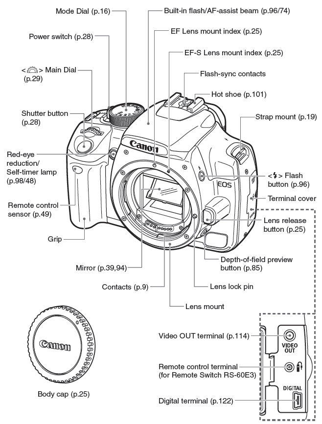 Digital slr, Search and Digital slr cameras on Pinterest