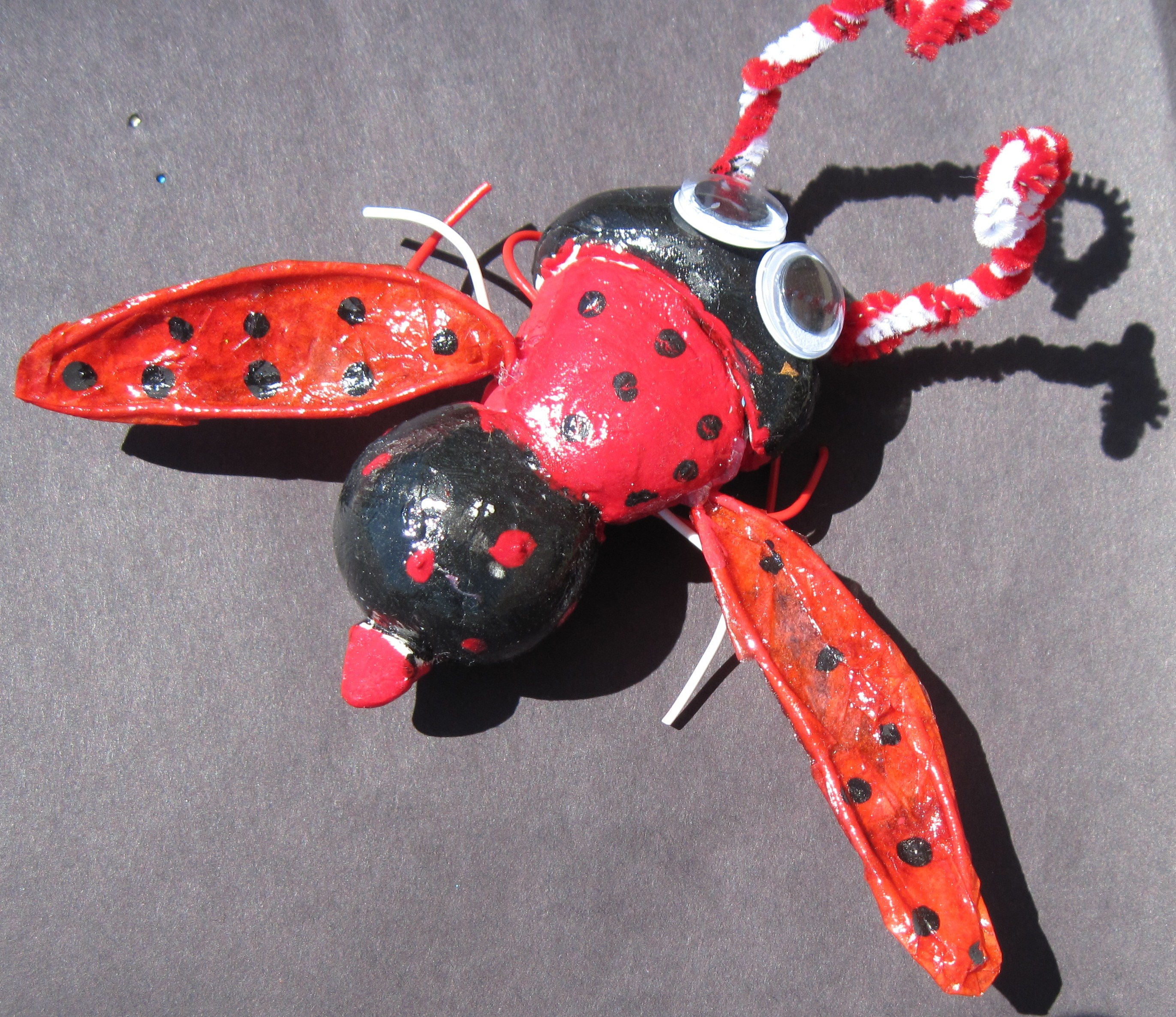 5th Grade 3 D Insects
